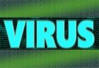 What is malicious code (software) and how can it be overcame?